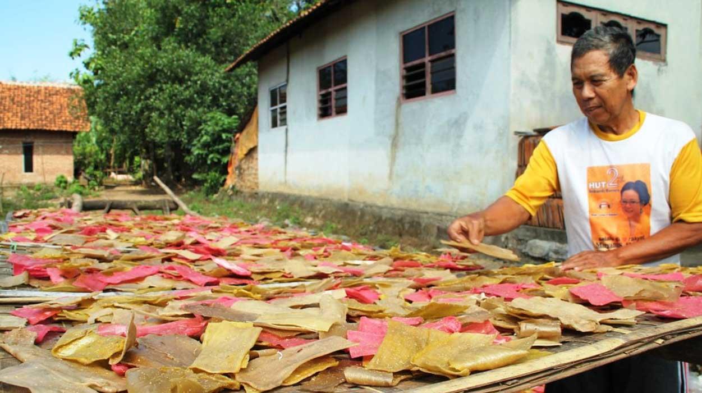 Image result for Peluang Usaha Rumahan Untuk Di desa
