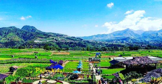 6 Prinsip Alokasi Dana Desa Yang Harus Di Utamakan